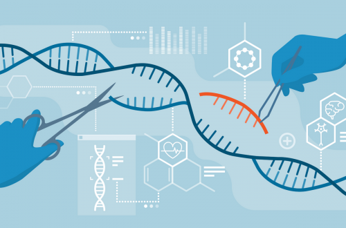 How Practical is CRISPR Gene Therapy?